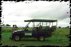 Elephant Rock Private Safari Lodge