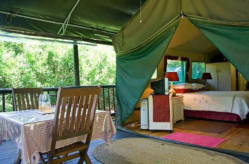 Thandulula Luxury Safari Tented Accommodation